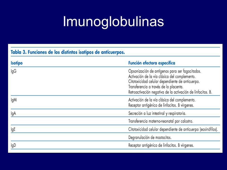 Imunoglobulinas