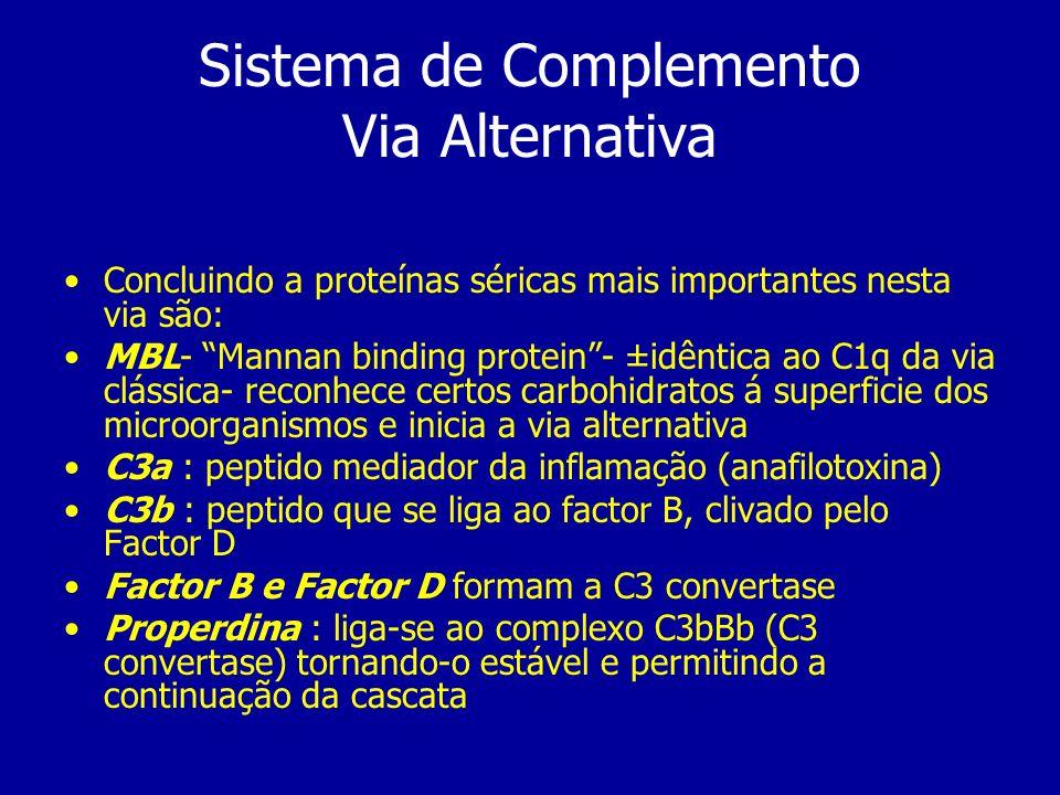 Sistema de Complemento Via Alternativa Concluindo a proteínas séricas mais importantes nesta via são: MBL- Mannan binding protein- ±idêntica ao C1q da