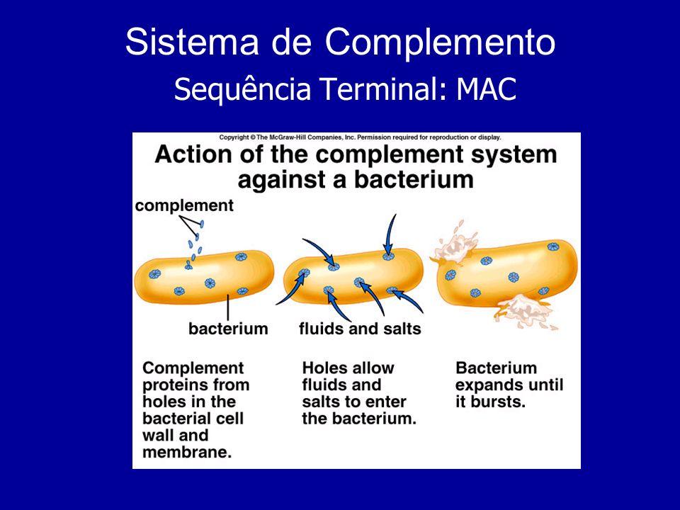 Sistema de Complemento Sequência Terminal: MAC