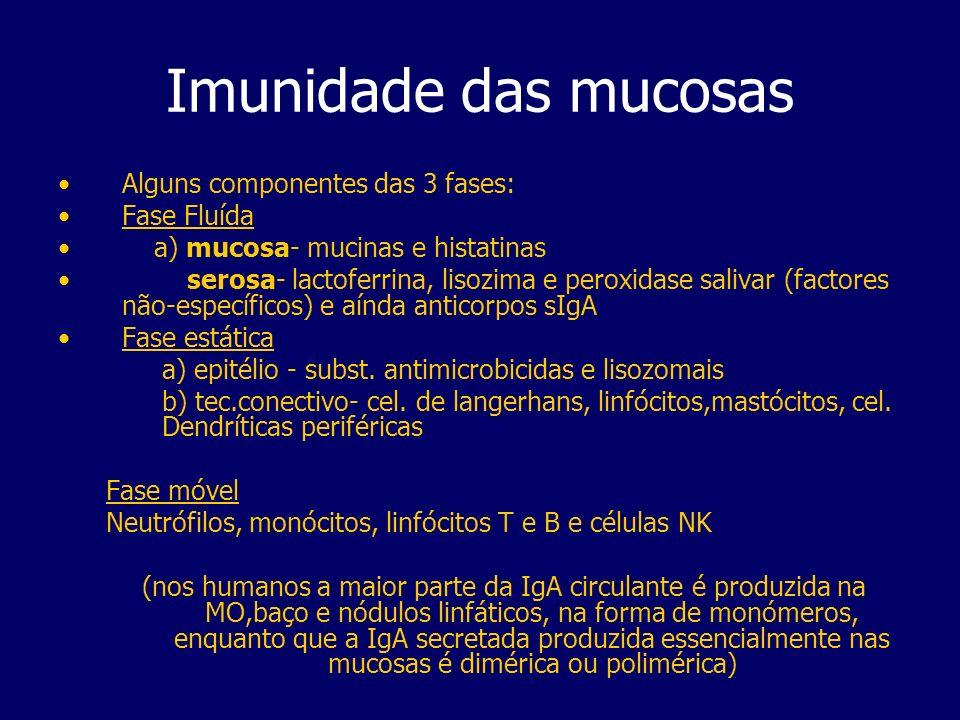 Imunidade das mucosas Alguns componentes das 3 fases: Fase Fluída a) mucosa- mucinas e histatinas serosa- lactoferrina, lisozima e peroxidase salivar