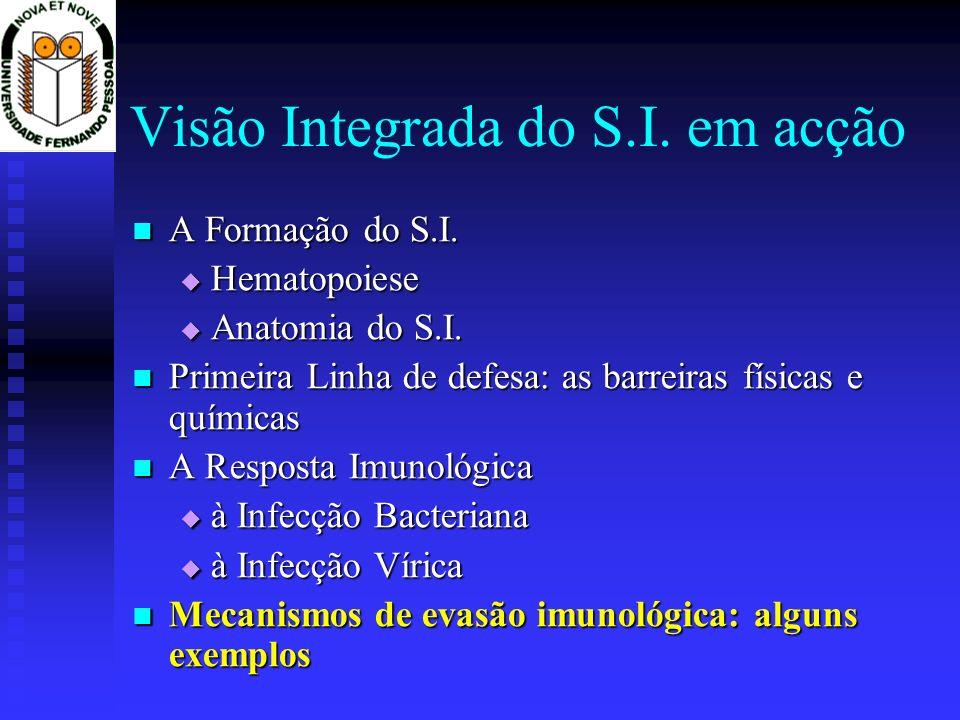 Visão Integrada do S.I. em acção A Formação do S.I. A Formação do S.I. Hematopoiese Hematopoiese Anatomia do S.I. Anatomia do S.I. Primeira Linha de d