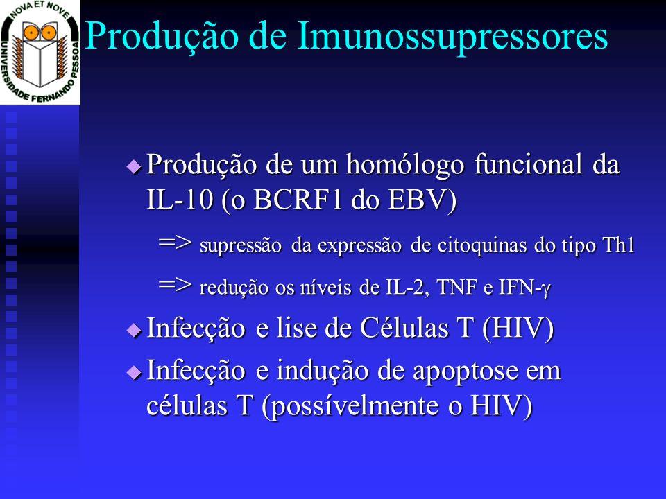 Produção de Imunossupressores Produção de um homólogo funcional da IL-10 (o BCRF1 do EBV) Produção de um homólogo funcional da IL-10 (o BCRF1 do EBV) => supressão da expressão de citoquinas do tipo Th1 => redução os níveis de IL-2, TNF e IFN- => redução os níveis de IL-2, TNF e IFN- Infecção e lise de Células T (HIV) Infecção e lise de Células T (HIV) Infecção e indução de apoptose em células T (possívelmente o HIV) Infecção e indução de apoptose em células T (possívelmente o HIV)