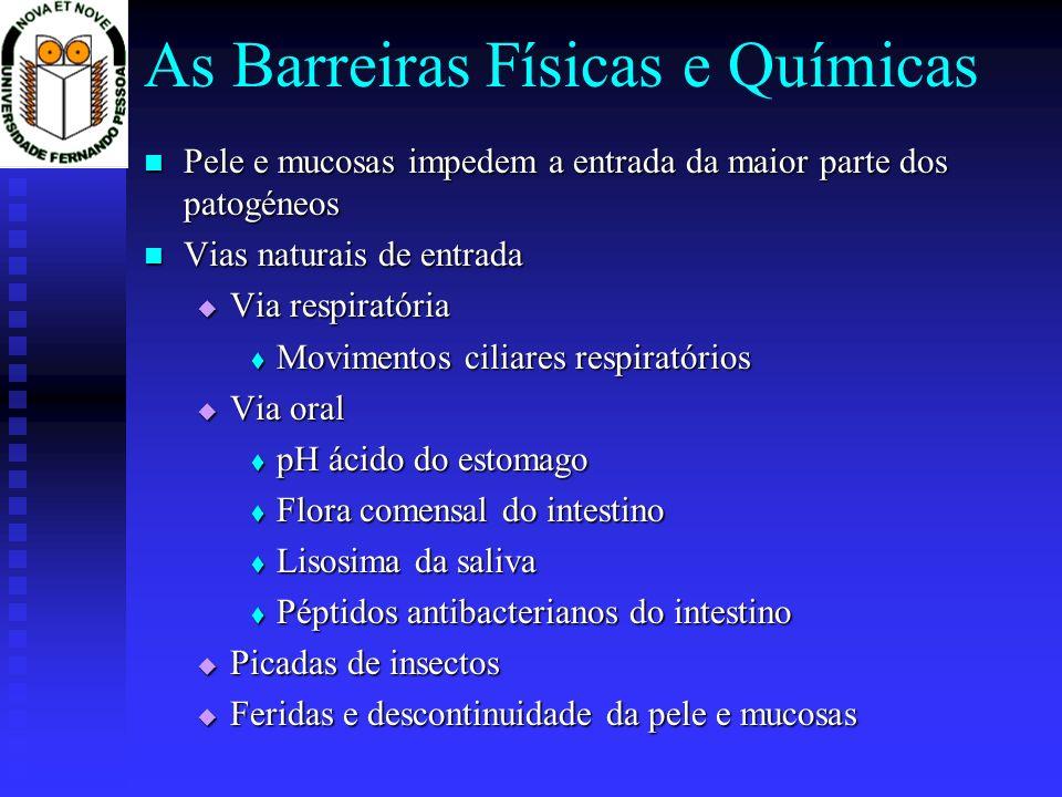 As Barreiras Físicas e Químicas Pele e mucosas impedem a entrada da maior parte dos patogéneos Pele e mucosas impedem a entrada da maior parte dos patogéneos Vias naturais de entrada Vias naturais de entrada Via respiratória Via respiratória Movimentos ciliares respiratórios Movimentos ciliares respiratórios Via oral Via oral pH ácido do estomago pH ácido do estomago Flora comensal do intestino Flora comensal do intestino Lisosima da saliva Lisosima da saliva Péptidos antibacterianos do intestino Péptidos antibacterianos do intestino Picadas de insectos Picadas de insectos Feridas e descontinuidade da pele e mucosas Feridas e descontinuidade da pele e mucosas