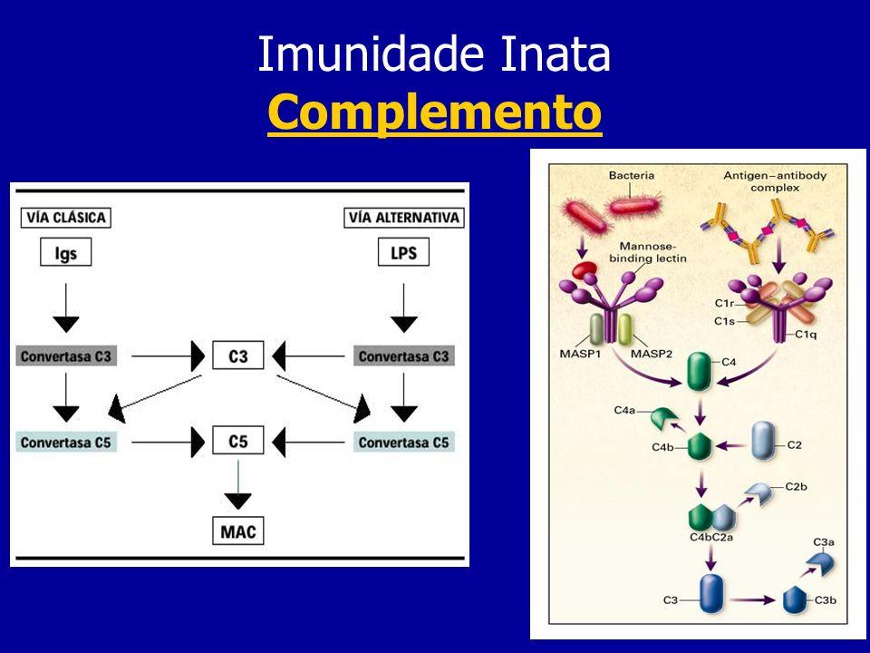 Imunidade Inata Complemento