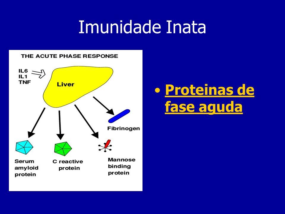 Citoquinas Libertadas pelas células do SI Modulam a inflamação Induzem a resposta adaptativa Efeitos na activação de complemento Efeitos pirogénicos (IL-1) Induzem a fagocitose