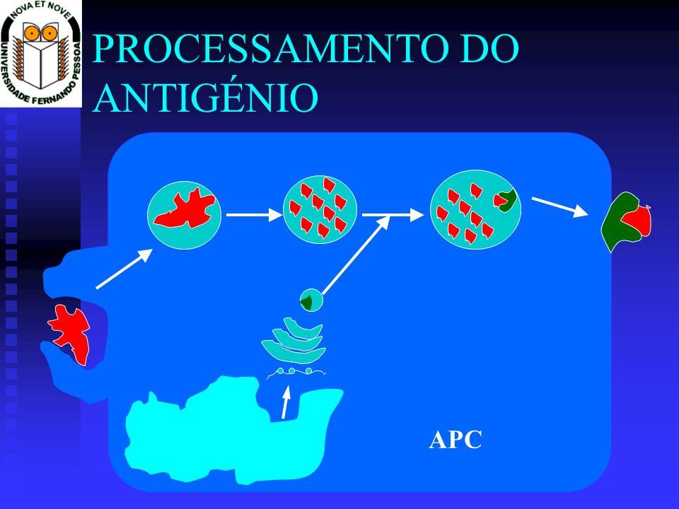 Captura de antigénios exógenos