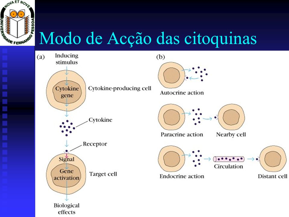 Propriedades das citoquinas