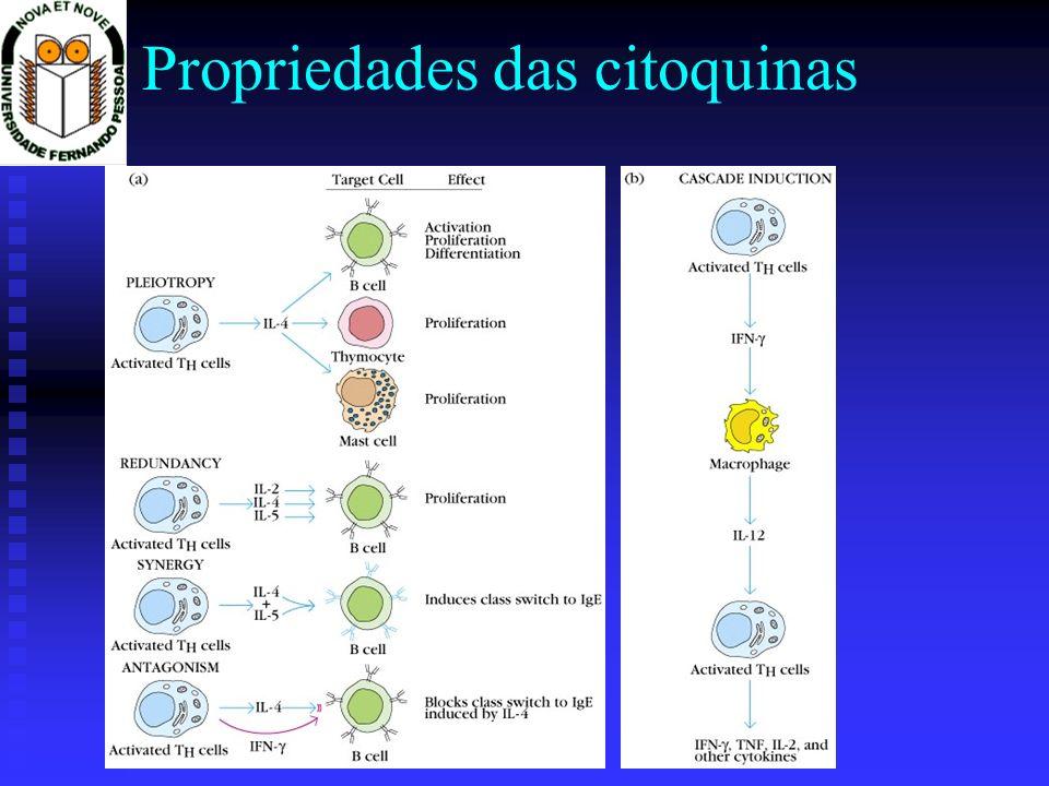 Detecção de citoquinas: ELISA