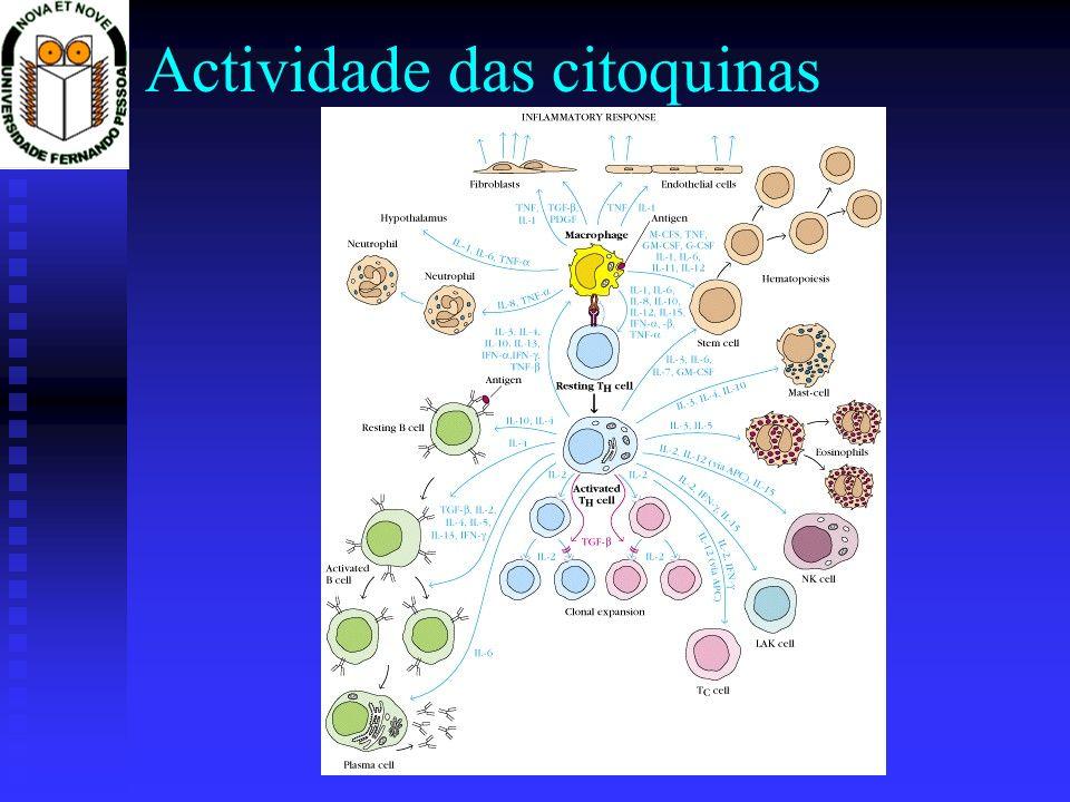 Regulação de células Th