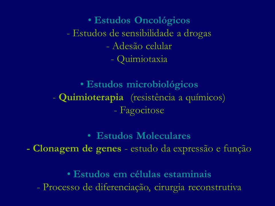 Estudos Oncológicos - Estudos de sensibilidade a drogas - Adesão celular - Quimiotaxia Estudos microbiológicos - Quimioterapia (resistência a químicos