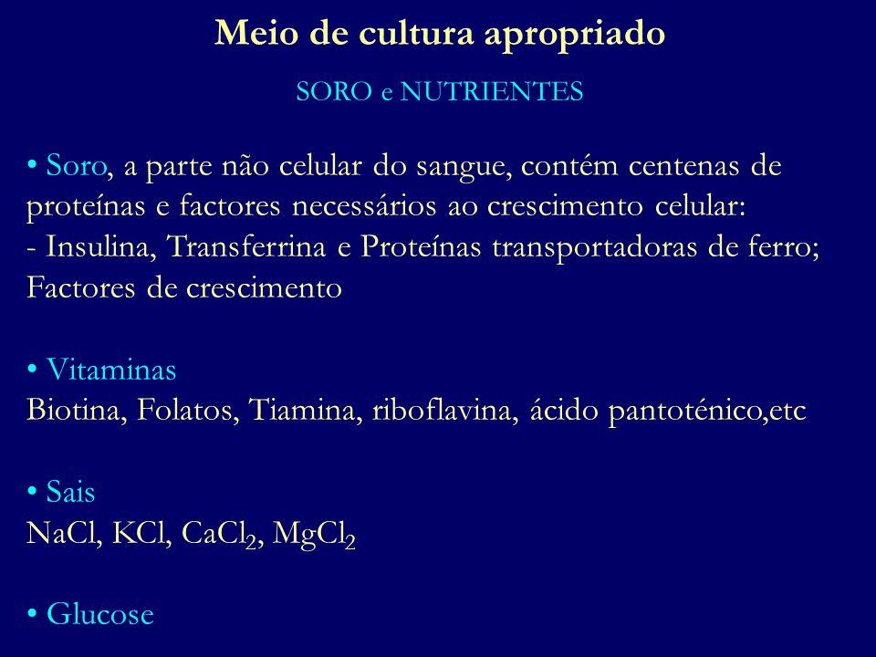 Meio de cultura apropriado SORO e NUTRIENTES Soro, a parte não celular do sangue, contém centenas de proteínas e factores necessários ao crescimento c