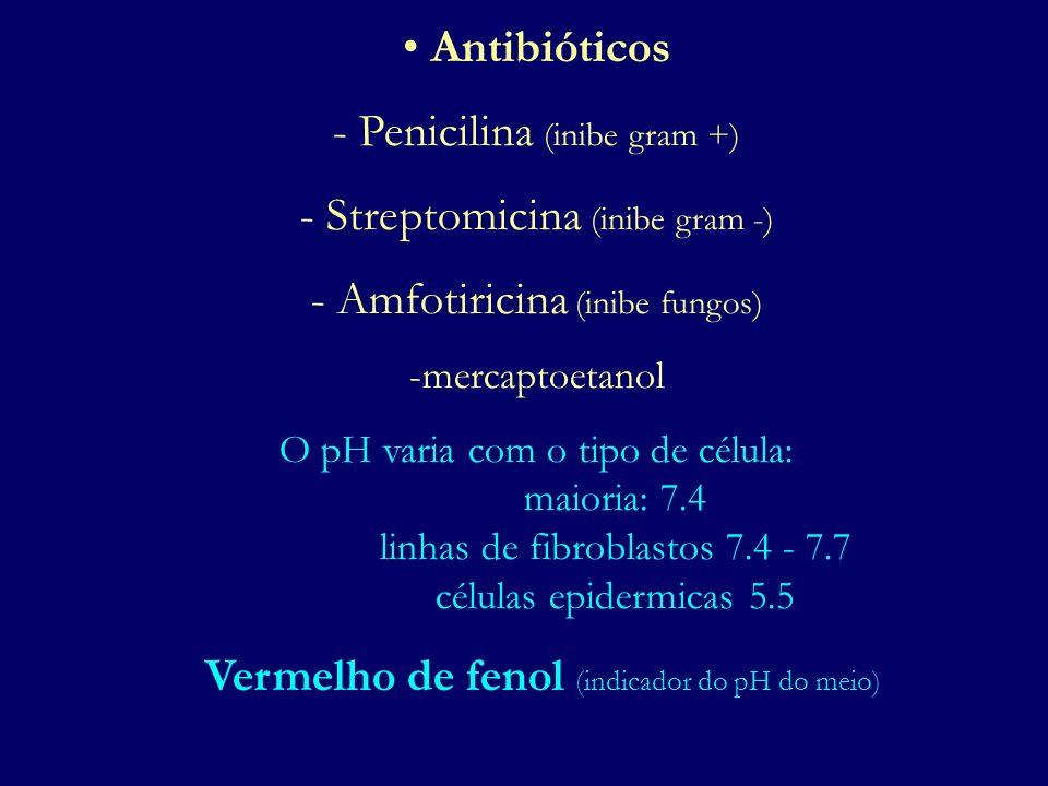 Antibióticos - Penicilina (inibe gram +) - Streptomicina (inibe gram -) - Amfotiricina (inibe fungos) -mercaptoetanol O pH varia com o tipo de célula: