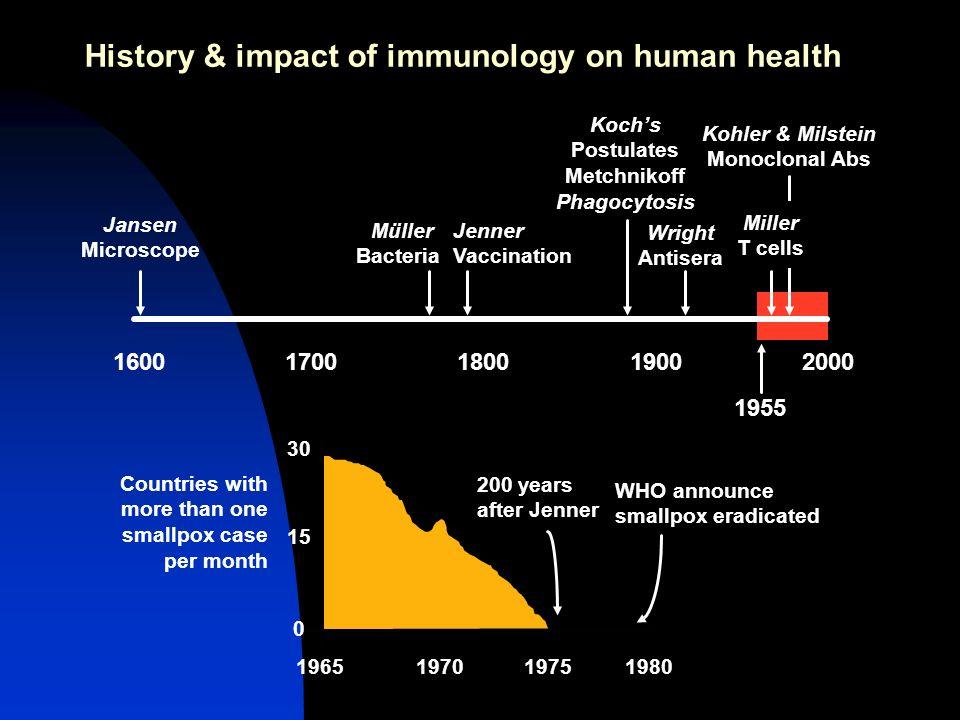 Características da resposta Imunológica Capacidade de reconhecimento muito abrangente Capacidade de reconhecer mais de 1,000,000,000 de estruturas Resposta muito destrutiva O S.I.