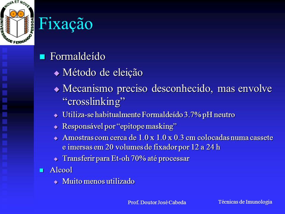 Técnicas de Imunologia Prof. Doutor José Cabeda Imunofluorescência (I)