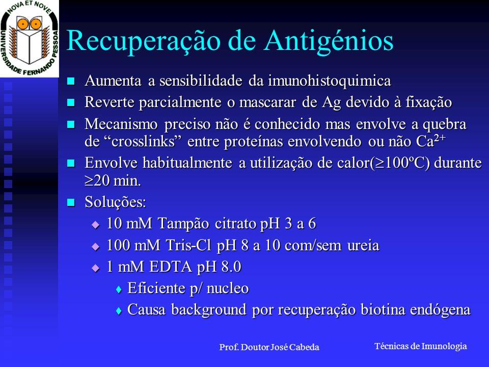 Técnicas de Imunologia Prof. Doutor José Cabeda Recuperação de Antigénios Aumenta a sensibilidade da imunohistoquimica Aumenta a sensibilidade da imun