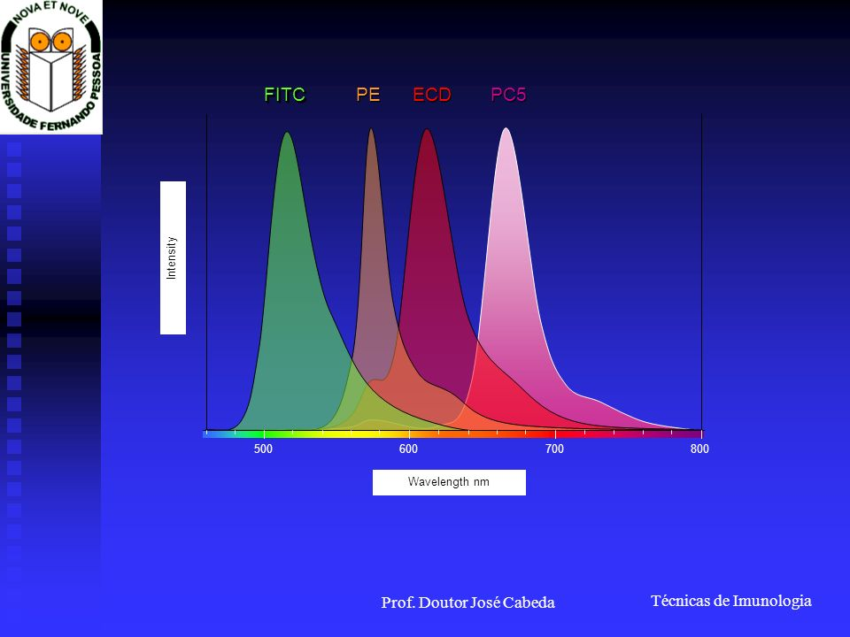 Técnicas de Imunologia Prof. Doutor José Cabeda 500600700800 Wavelength nm IntensityFITCFITC PE ECD PC5