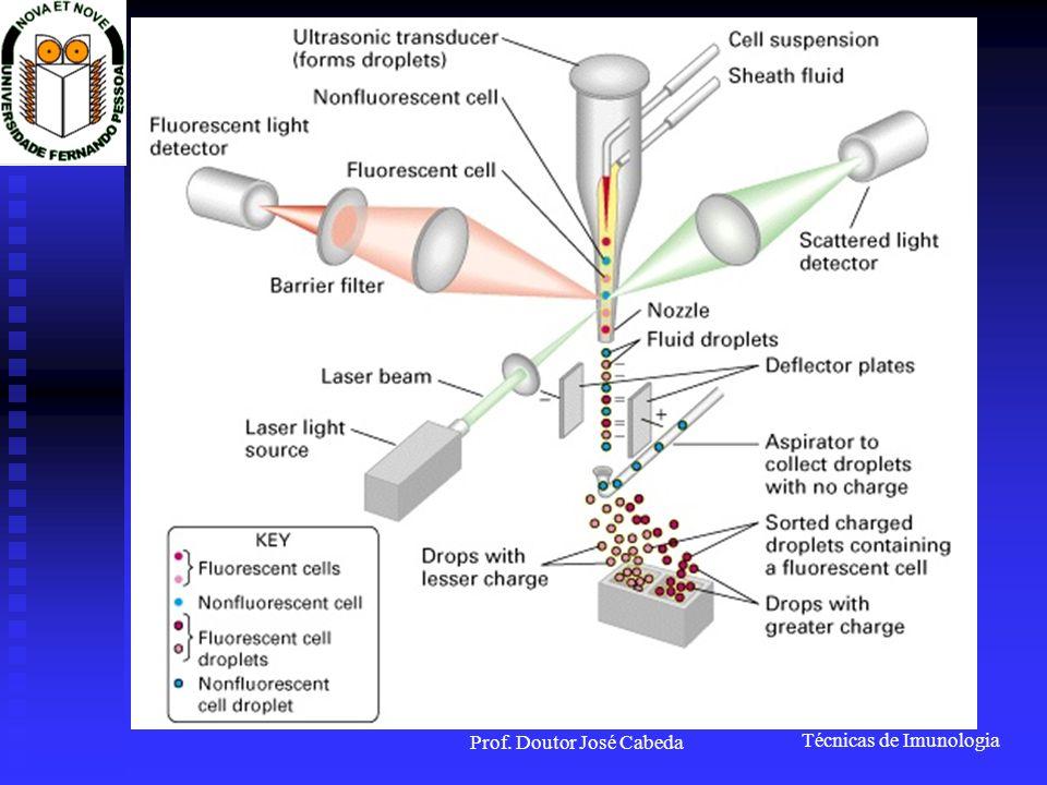 Técnicas de Imunologia Prof. Doutor José Cabeda O que é a Fluorescência? Laser