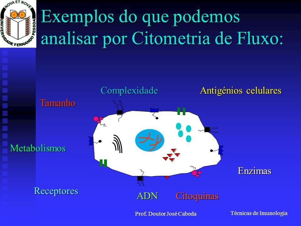 Técnicas de Imunologia Prof. Doutor José Cabeda Exemplos do que podemos analisar por Citometria de Fluxo: Metabolismos Receptores ADNCitoquinas Enzima