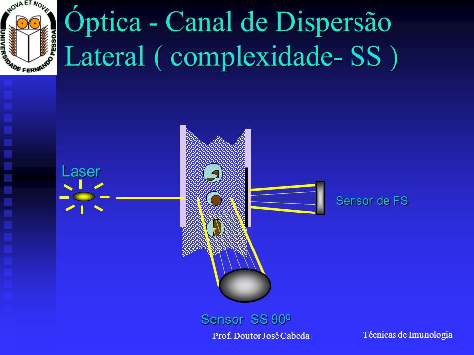 Técnicas de Imunologia Prof. Doutor José Cabeda COMPENSATION