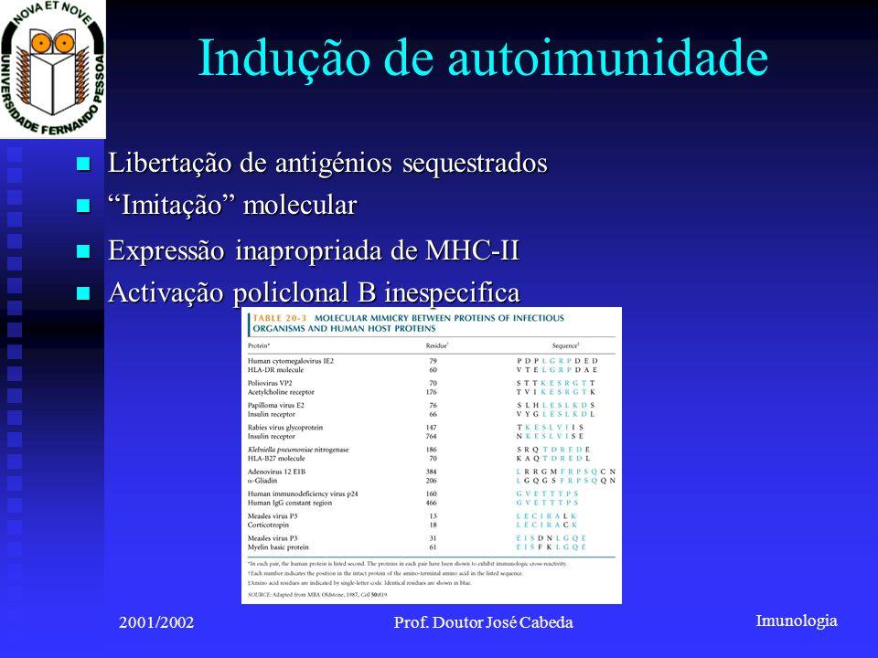 Imunologia 2001/2002Prof. Doutor José Cabeda Indução de autoimunidade Libertação de antigénios sequestrados Libertação de antigénios sequestrados Imit