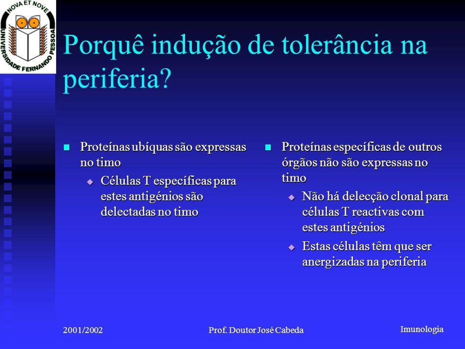 Imunologia 2001/2002Prof. Doutor José Cabeda Porquê indução de tolerância na periferia? Proteínas ubíquas são expressas no timo Proteínas ubíquas são