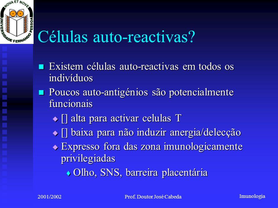 Imunologia 2001/2002Prof. Doutor José Cabeda Células auto-reactivas? Existem células auto-reactivas em todos os indivíduos Existem células auto-reacti