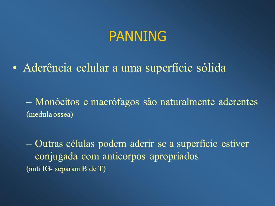 PANNING Aderência celular a uma superfície sólida –Monócitos e macrófagos são naturalmente aderentes (medula óssea) –Outras células podem aderir se a