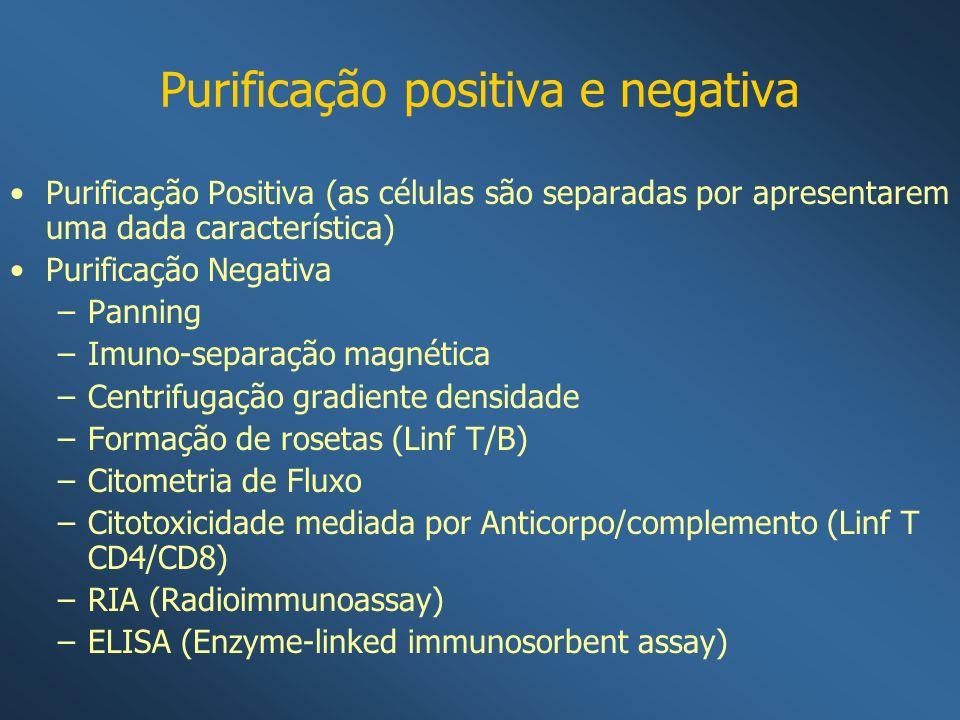 Purificação positiva e negativa Purificação Positiva (as células são separadas por apresentarem uma dada característica) Purificação Negativa –Panning