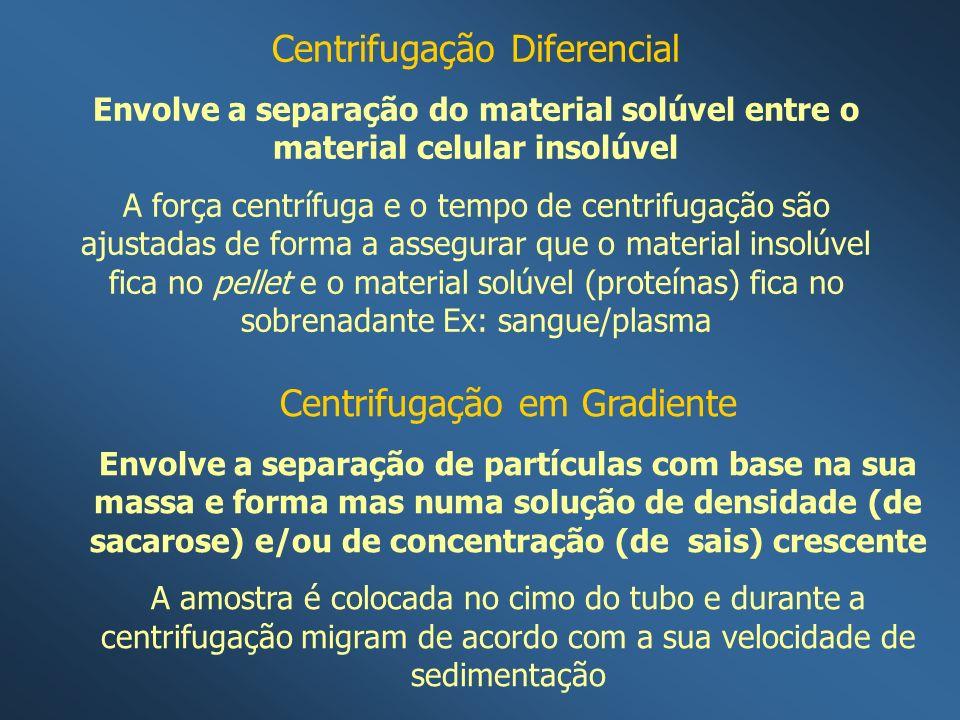 Centrifugação Diferencial Envolve a separação do material solúvel entre o material celular insolúvel A força centrífuga e o tempo de centrifugação são