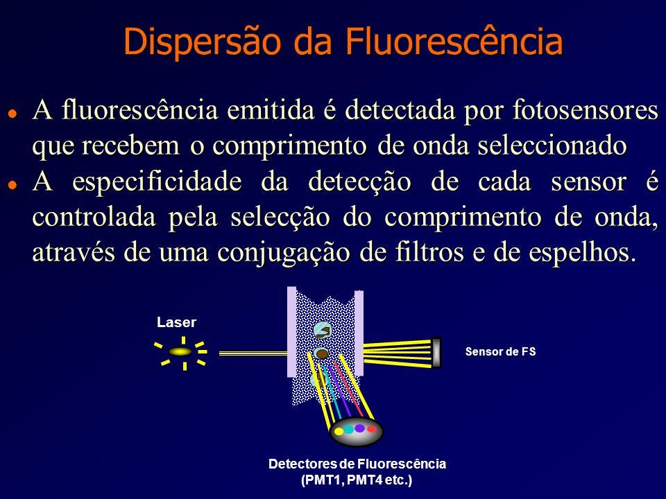 Fotosensor de Dispersão Lateral (SS) l Capta a intensidade e luz dispersa a 90 o l A intensidade dessa dispersão é proporcional ao tamanho, granularid