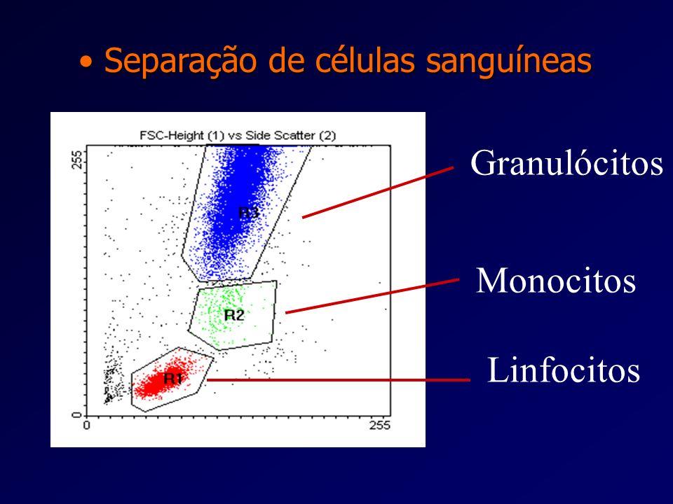 Imunologia - Aplicações práticas Imunologia - Aplicações práticas Separação de células sanguíneas Diferenciação de sub populações de linfóc itos T Dif