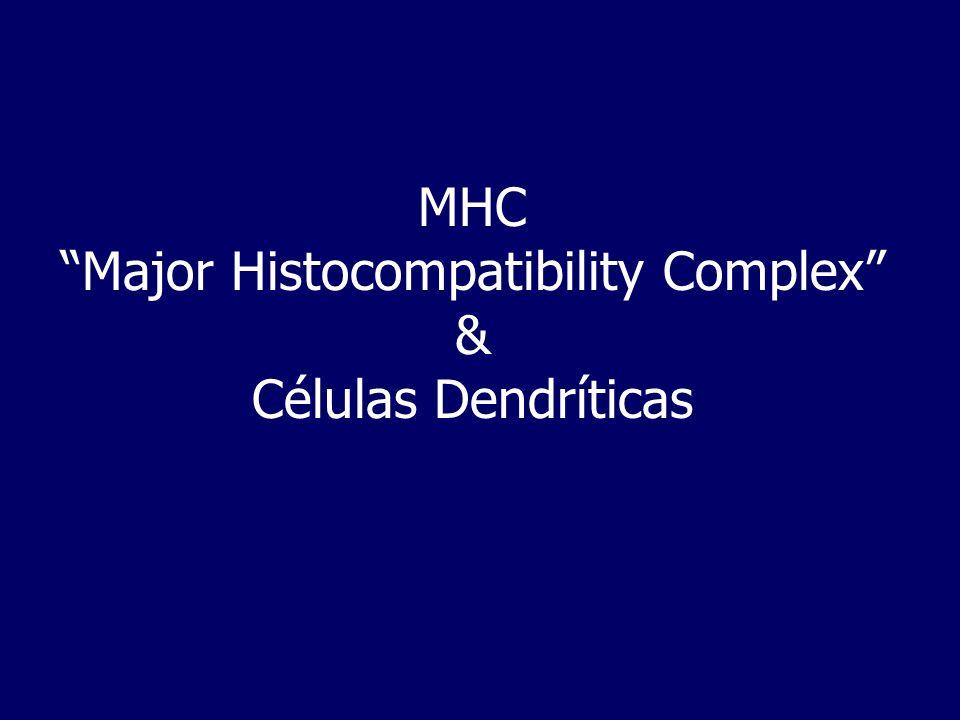 MHC Todas as espécies possuem um cluster de genes denominado MHC, cujos produtos são de importância para o reconhecimento intercelular e a descriminação self- nonself.
