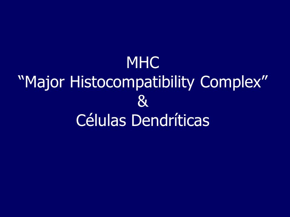 MHC-Via endógena e exógena
