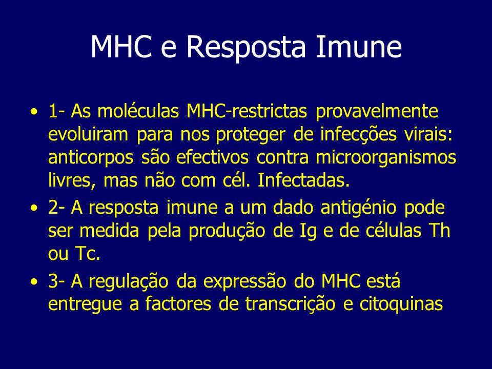 MHC e Resposta Imune 1- As moléculas MHC-restrictas provavelmente evoluiram para nos proteger de infecções virais: anticorpos são efectivos contra mic