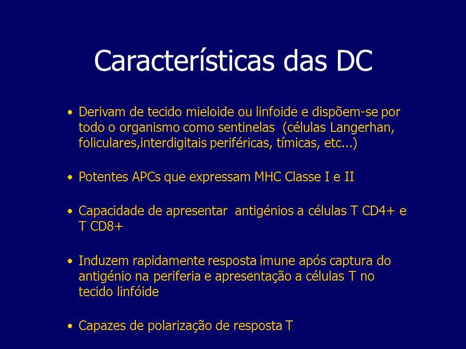 Características das DC Derivam de tecido mieloide ou linfoide e dispõem-se por todo o organismo como sentinelas (células Langerhan, foliculares,interd