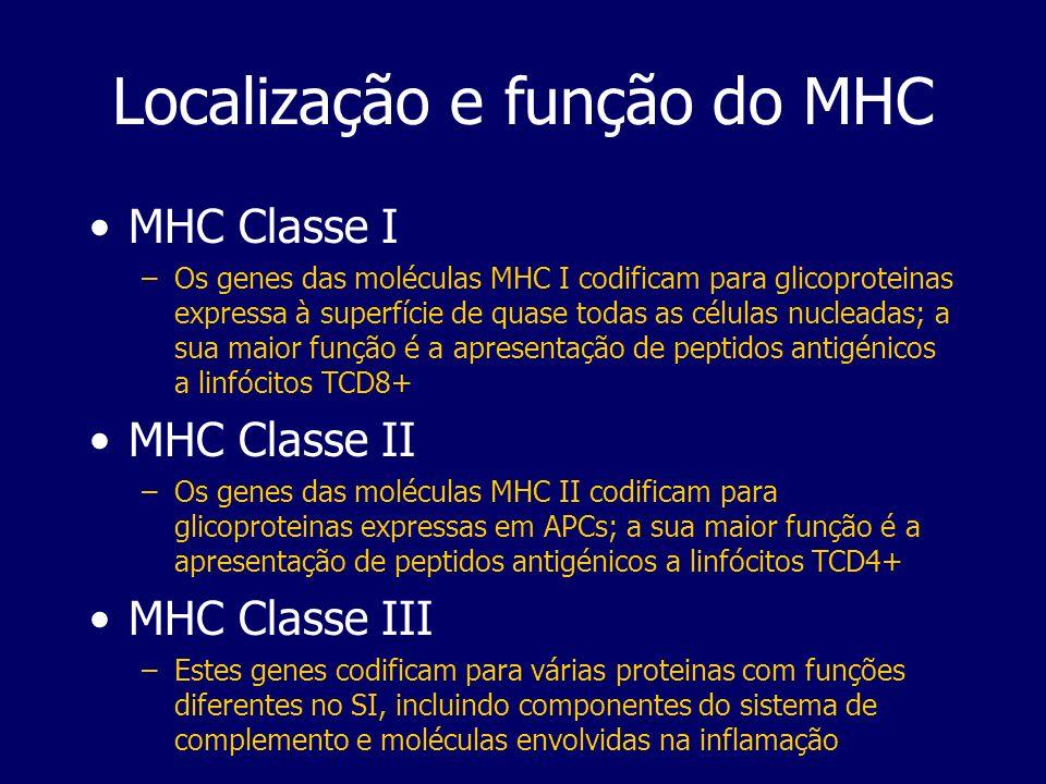 Localização e função do MHC MHC Classe I –Os genes das moléculas MHC I codificam para glicoproteinas expressa à superfície de quase todas as células n