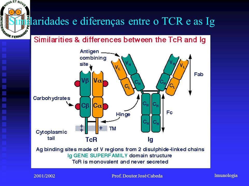 Imunologia 2001/2002Prof. Doutor José Cabeda Similaridades e diferenças entre o TCR e as Ig