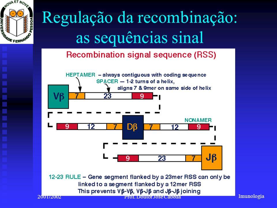 Imunologia 2001/2002Prof. Doutor José Cabeda Regulação da recombinação: as sequências sinal