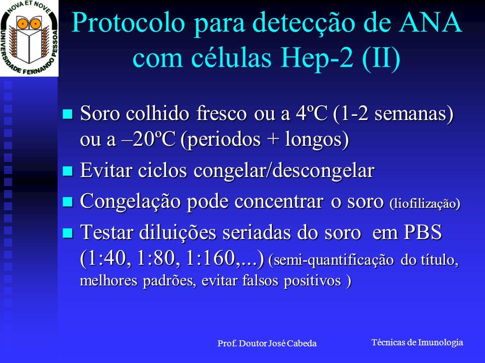 Técnicas de Imunologia Prof. Doutor José Cabeda Protocolo para detecção de ANA com células Hep-2 (II) Soro colhido fresco ou a 4ºC (1-2 semanas) ou a