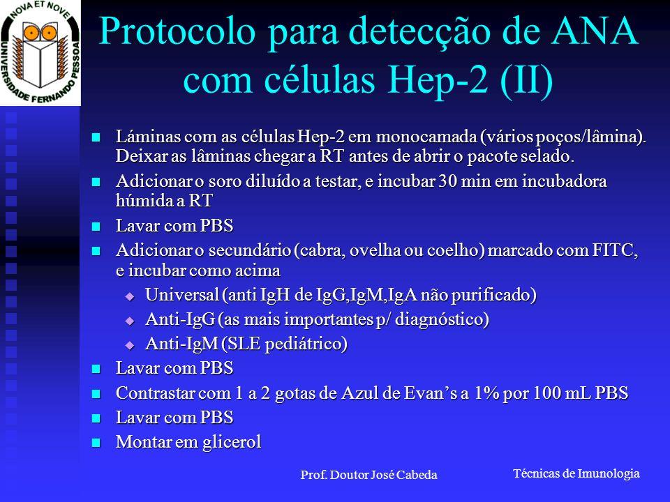 Técnicas de Imunologia Prof. Doutor José Cabeda Protocolo para detecção de ANA com células Hep-2 (II) Láminas com as células Hep-2 em monocamada (vári