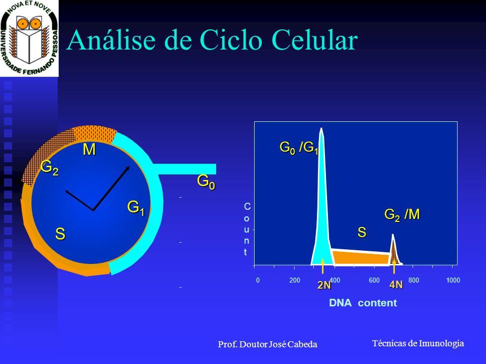 Técnicas de Imunologia Prof. Doutor José Cabeda Análise de Ciclo Celular G2G2G2G2 M G0G0G0G0 G1G1G1G1 S CountCount 0 200 400 600 8001000 G0G0G0G0 /G 1