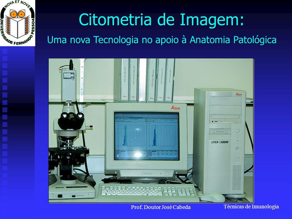 Técnicas de Imunologia Prof. Doutor José Cabeda Citometria de Imagem: Uma nova Tecnologia no apoio à Anatomia Patológica