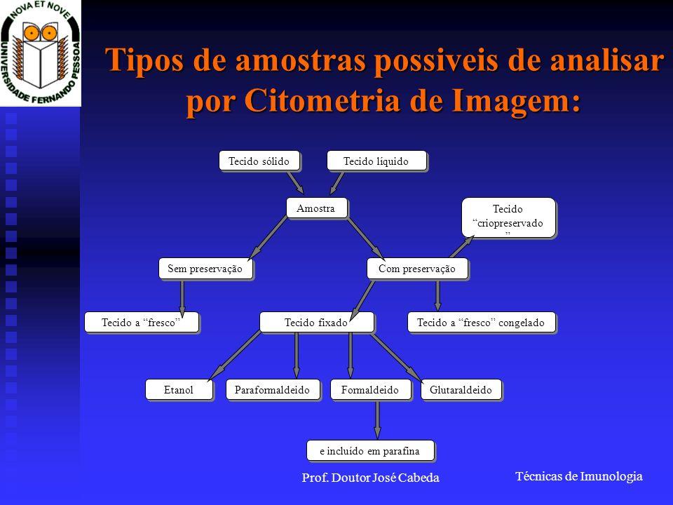 Técnicas de Imunologia Prof. Doutor José Cabeda Tipos de amostras possiveis de analisar por Citometria de Imagem: Etanol Glutaraldeido Tecido fixado T