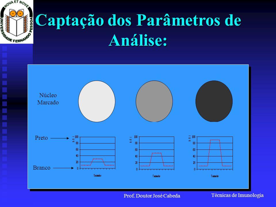 Técnicas de Imunologia Prof. Doutor José Cabeda Captação dos Parâmetros de Análise: Núcleo Marcado Branco Preto