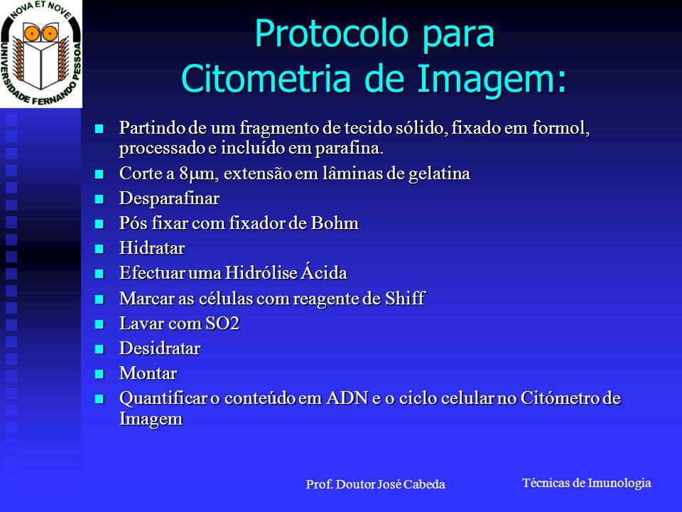 Técnicas de Imunologia Prof. Doutor José Cabeda Protocolo para Citometria de Imagem: Partindo de um fragmento de tecido sólido, fixado em formol, proc