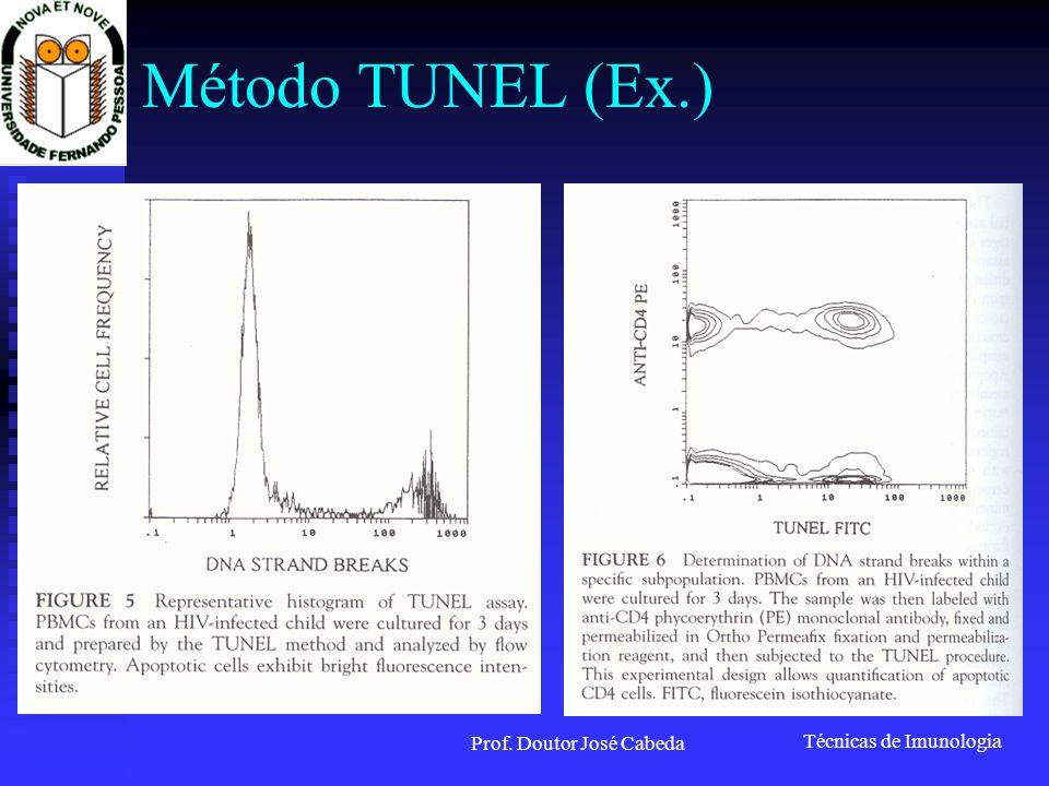 Técnicas de Imunologia Prof. Doutor José Cabeda Método TUNEL (Ex.)