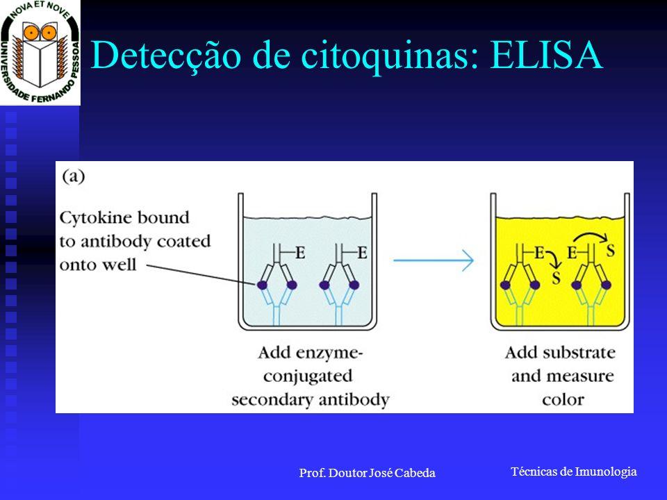 Técnicas de Imunologia Prof. Doutor José Cabeda Detecção de citoquinas: ELISA