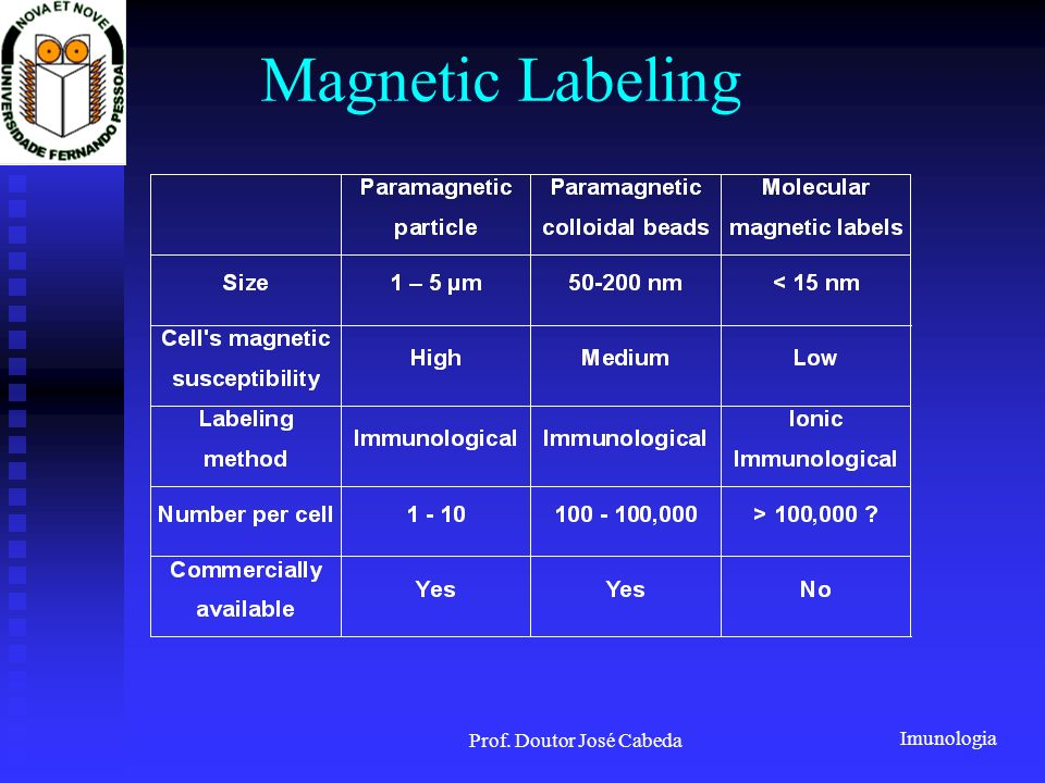 Imunologia Prof. Doutor José Cabeda Magnetic Labeling