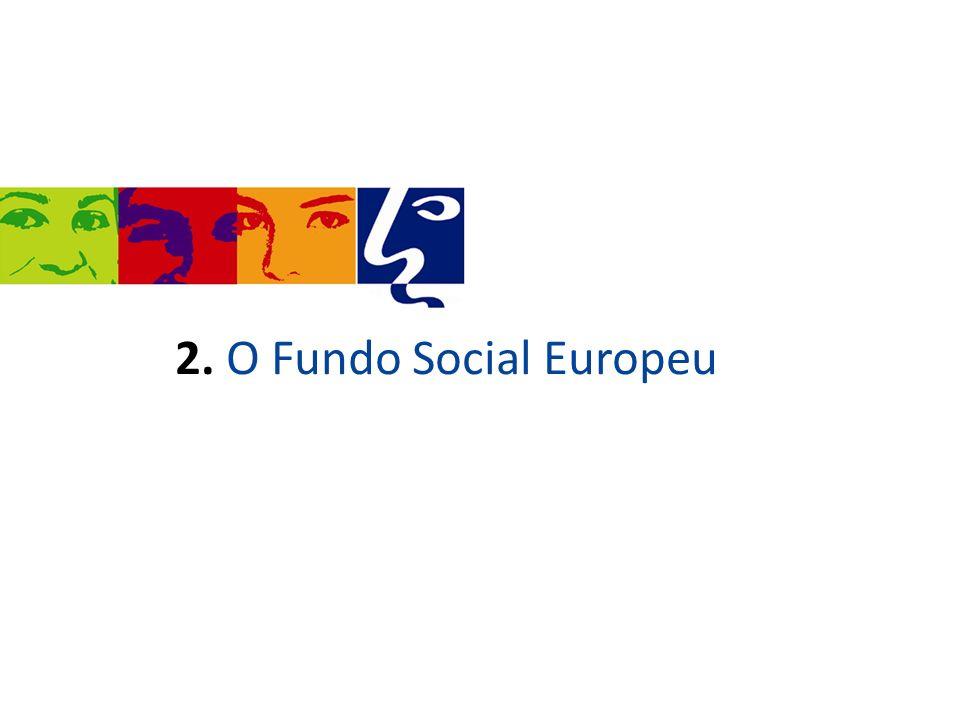 É o principal instrumento financeiro da União Europeia para apoiar as pessoas a melhorar os seus níveis de educação e de qualificação.
