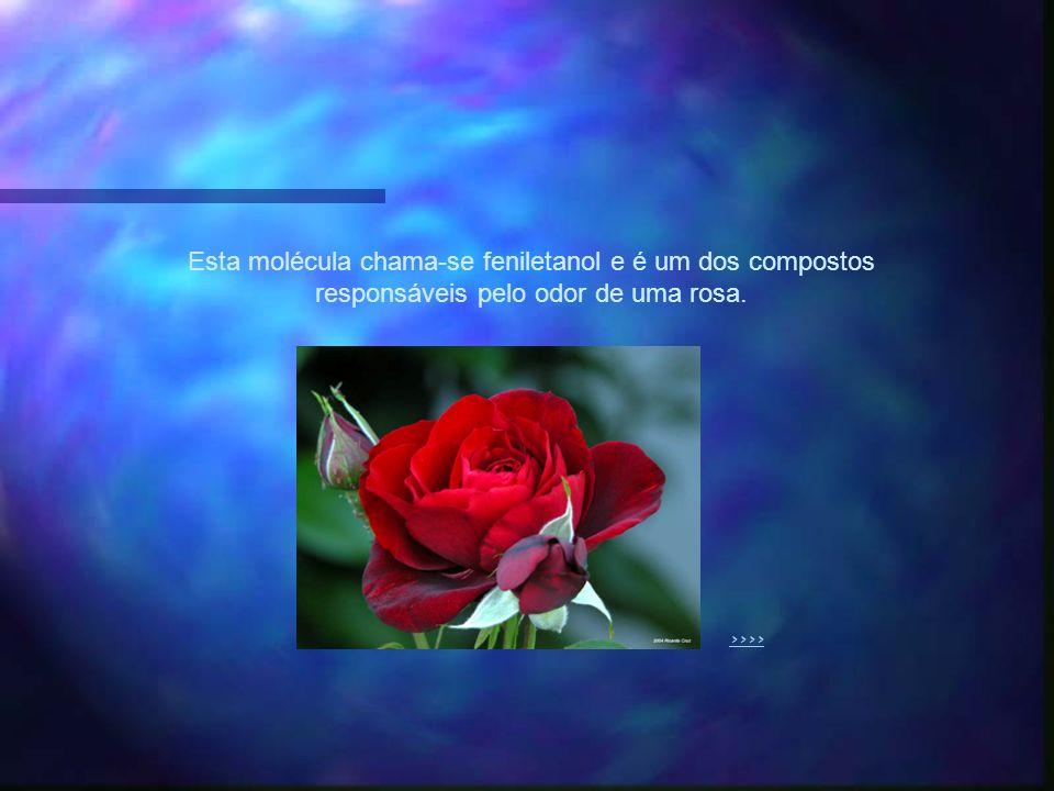 Esta molécula chama-se feniletanol e é um dos compostos responsáveis pelo odor de uma rosa. >>>>